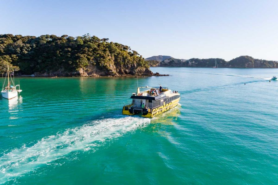10 Day North Island Guided Tour