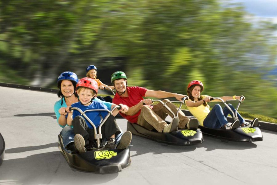 10 Day North Island Family Guided Tour