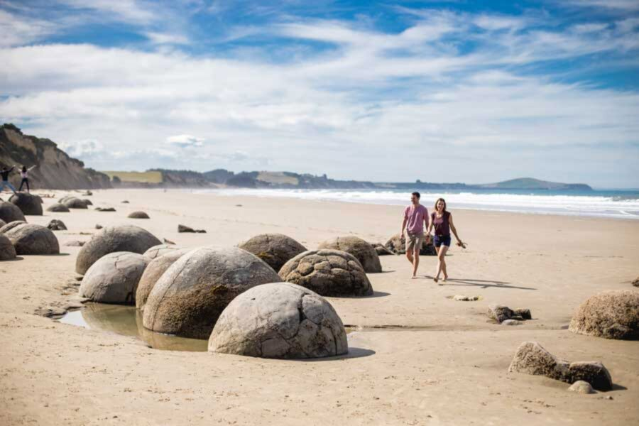 The Best Time to Travel to New Zealand